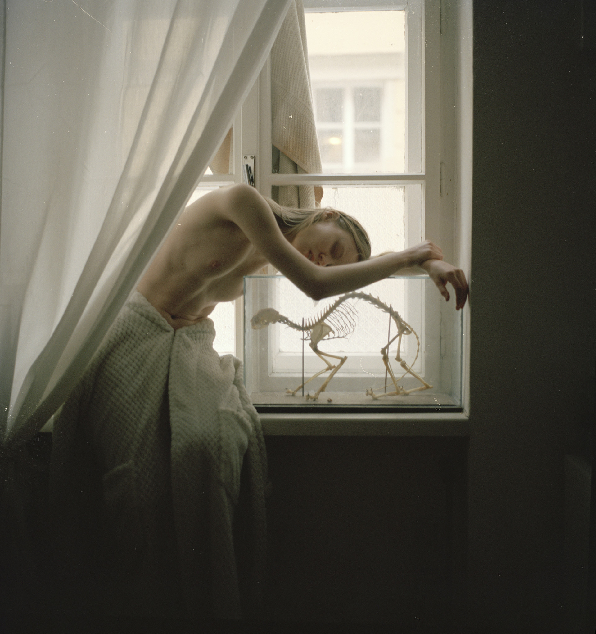 evelyn bencicova analogue